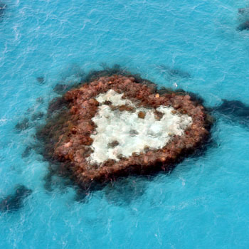 Heart-shaped reef at Great Barrier Reef
