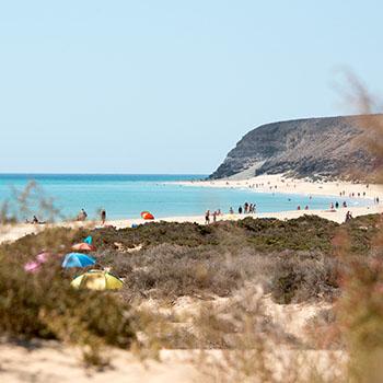 Highlights auf Fuerteventura Spanien