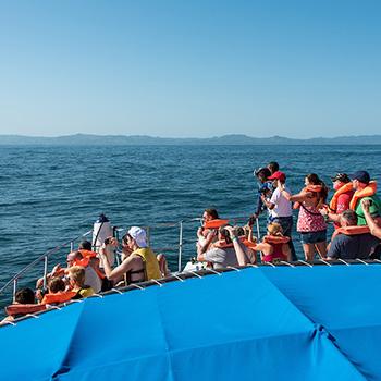 Wale Samana Bay und Bacardi Island