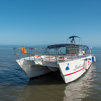 Samana Bucht und Bacardi Island Dominikanische Republik