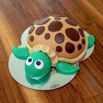 Kuppeltorte als Schildkröte