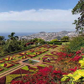 Botanischer Garten und Markthalle Funchal Madeira