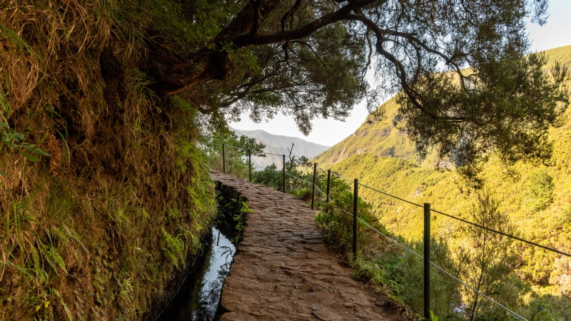 Wandern an der Levada do Risco