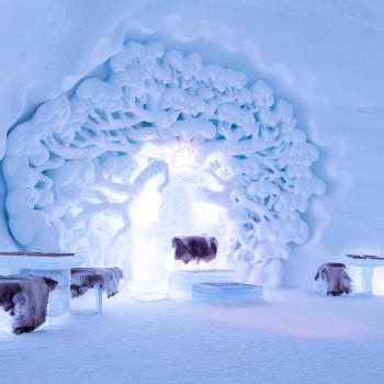 Tromso Ice Domes Hotel