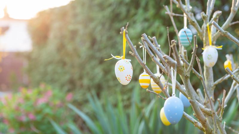 Wallpaper Ostern mit bunten Ostereiern am Strauch