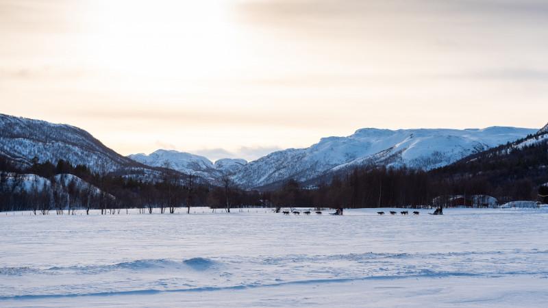 Schneelandschaft in Norwegen mit Hundeschlitten