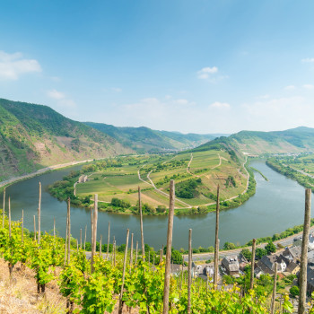 Hiking in the Moselle Valley Germany