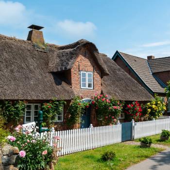 Schönes Reetdachhaus mit Rosengarten Nieblum