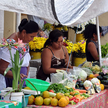 Mexiko Rundreise Merida, Hunucma & Celestun