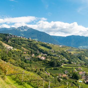 Dorf Tirol und Ifinger Berge