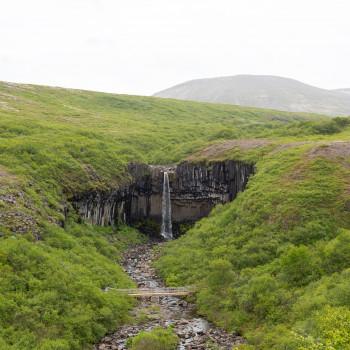 Landschaft am Svartifoss Wasserfall in Island