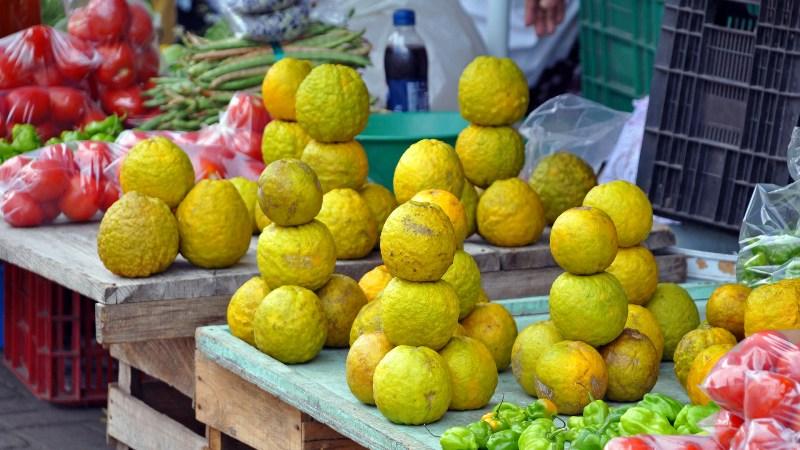 Frische gelbe Guave Früchte