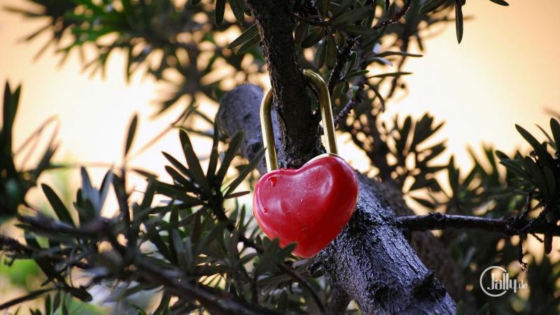Liebesschlösser für verliebte Herzen
