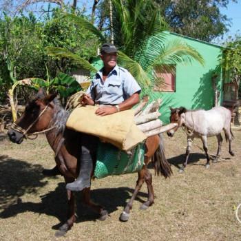Bauer und Esel in der Dominikanischen Republik